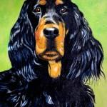 dog-portrait-ben-gordon-setter.jpg