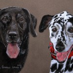 Patch, Dalmatian and Frasier, Labrador Retriever