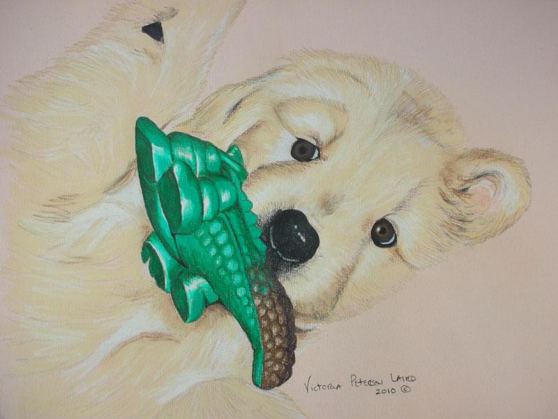 Dog Portraits – Pet ...