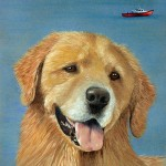 Mariner, Golden Retriever