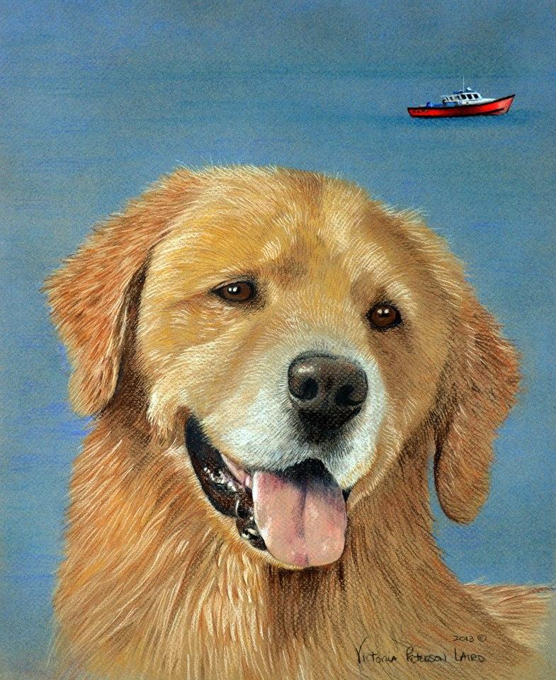 Mariner, Golden Retriever