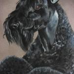 Rev, Kerry Blue Terrier