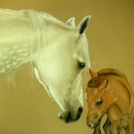 Charm and Faith, Arabians [Prints available. Limited edition of 20]