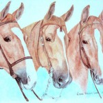 Three Saddlebred Horse Family